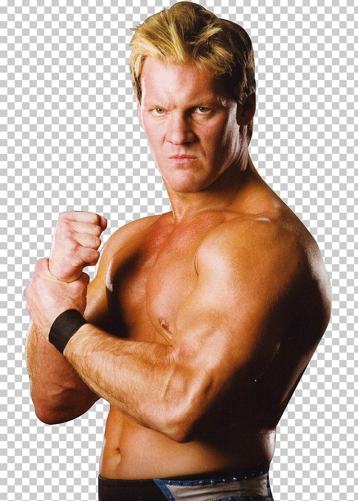 Chris Jericho WWE Superstars Professional Wrestler Finisher.