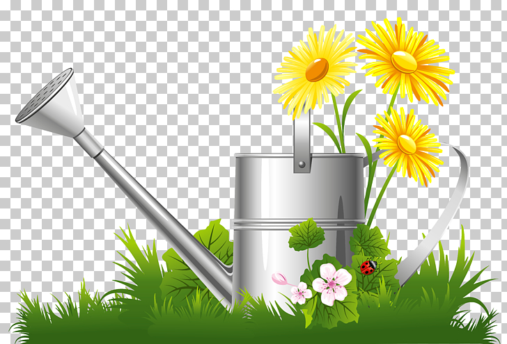 Flower garden , Spring Decoration with Water Can Grass and.