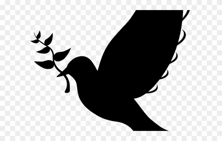Peace Dove Clipart Twig.