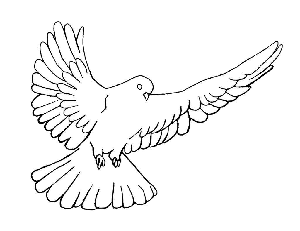 Holy Spirit Dove Symbol.