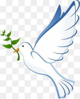 Holy Spirit PNG.