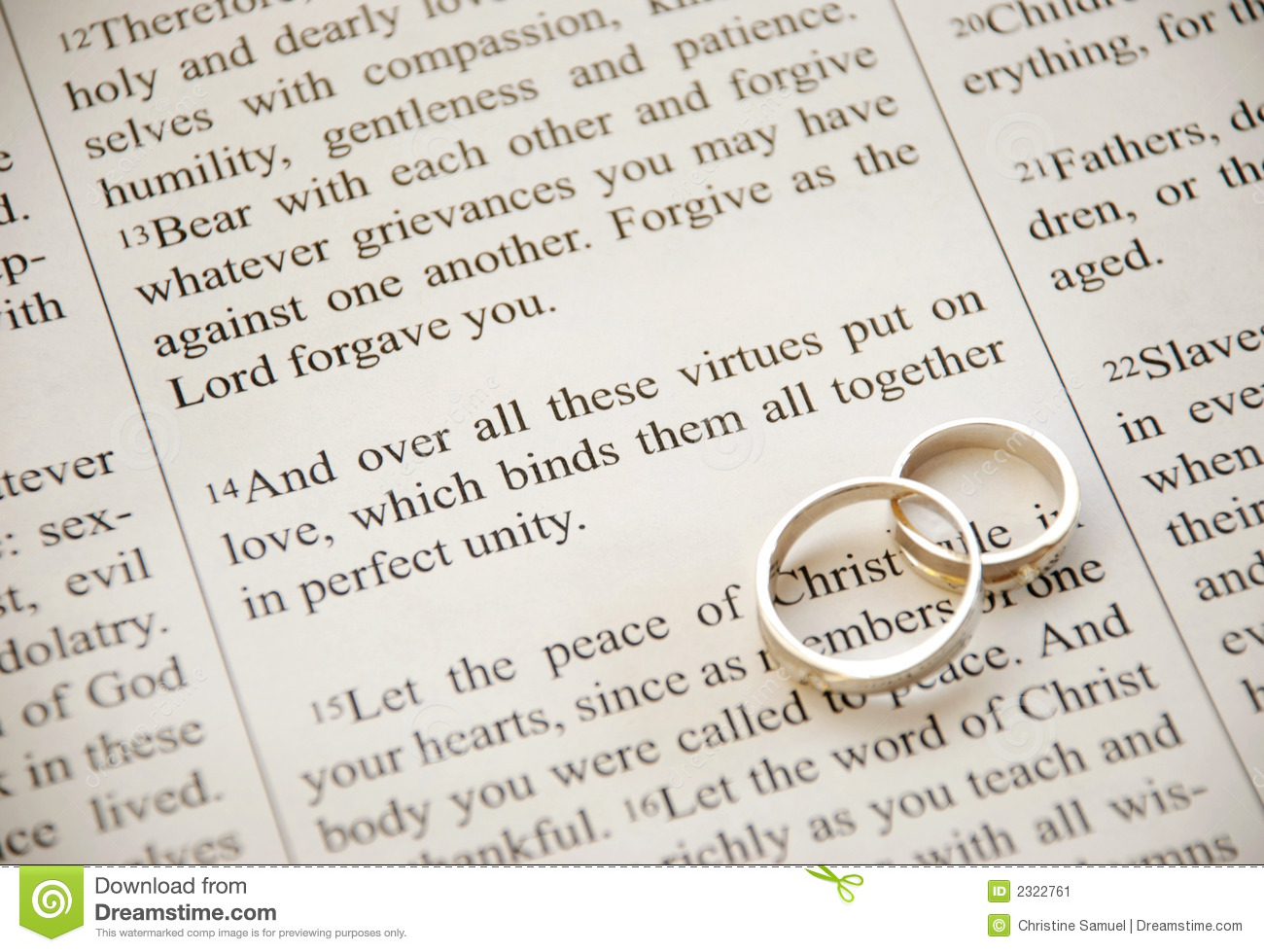 Scripture And Rings Stock Image.