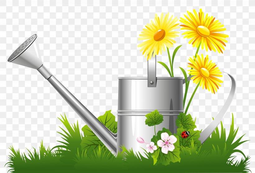 Flower Garden Clip Art, PNG, 9348x6350px, Garden, Daisy.