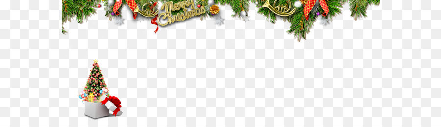 Christmas Tree Branch png download.