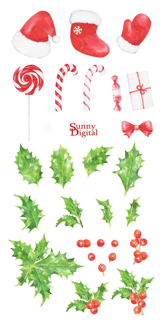 Holly clipart Christmas berries watercolor Handpainted candy cane.