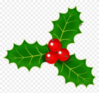 Download Free png holly berries /holiday/Christmas/holly/holly.