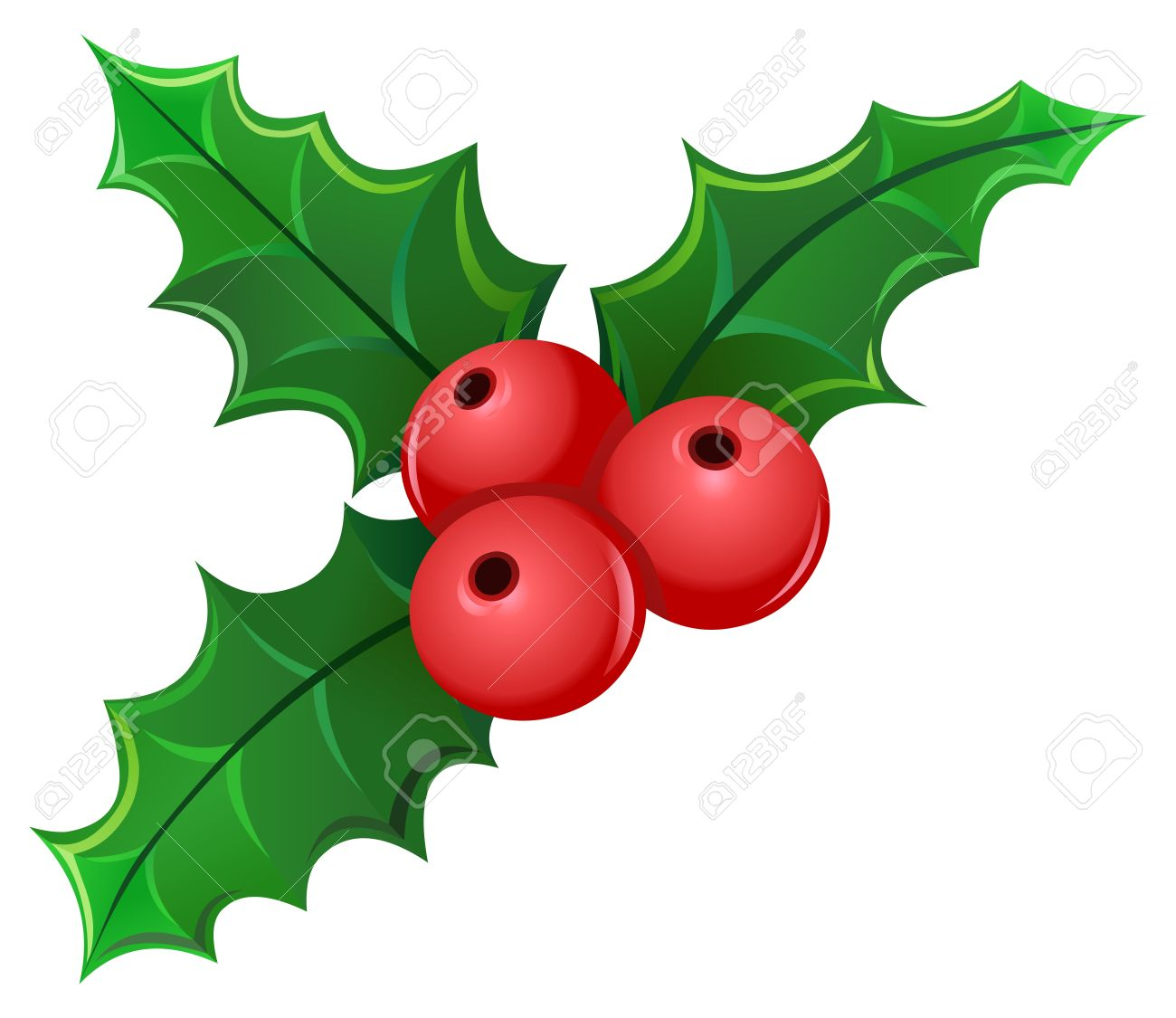 Christmas holly berry mistletoe.