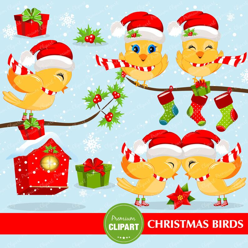 Christmas birds clipart, Christmas clipart, Bird clipart, Christmas digital  graphics, Christmas stocking, Commercial use.