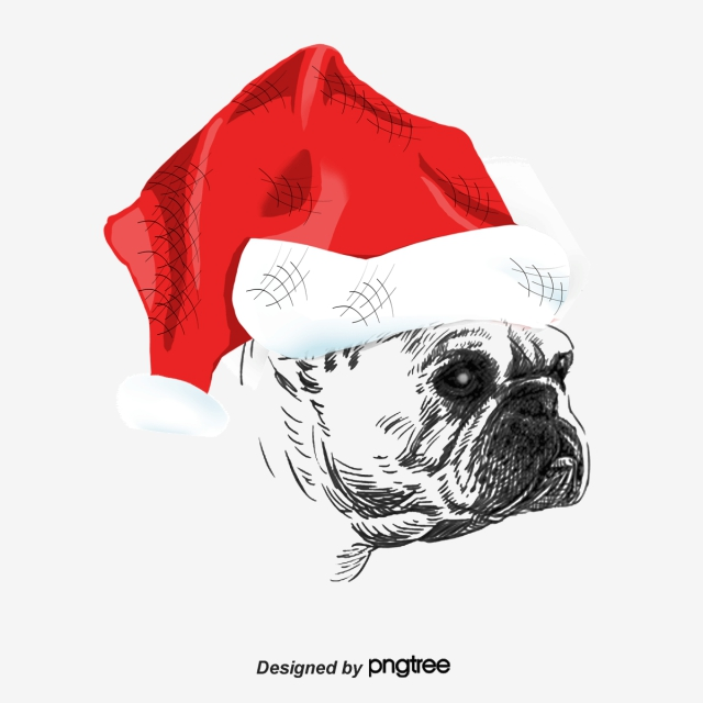 Christmas Dog Png, Vector, PSD, and Clipart With Transparent.