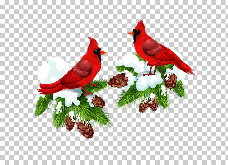 Bird Northern cardinal Christmas card , Couple Bird Creative.