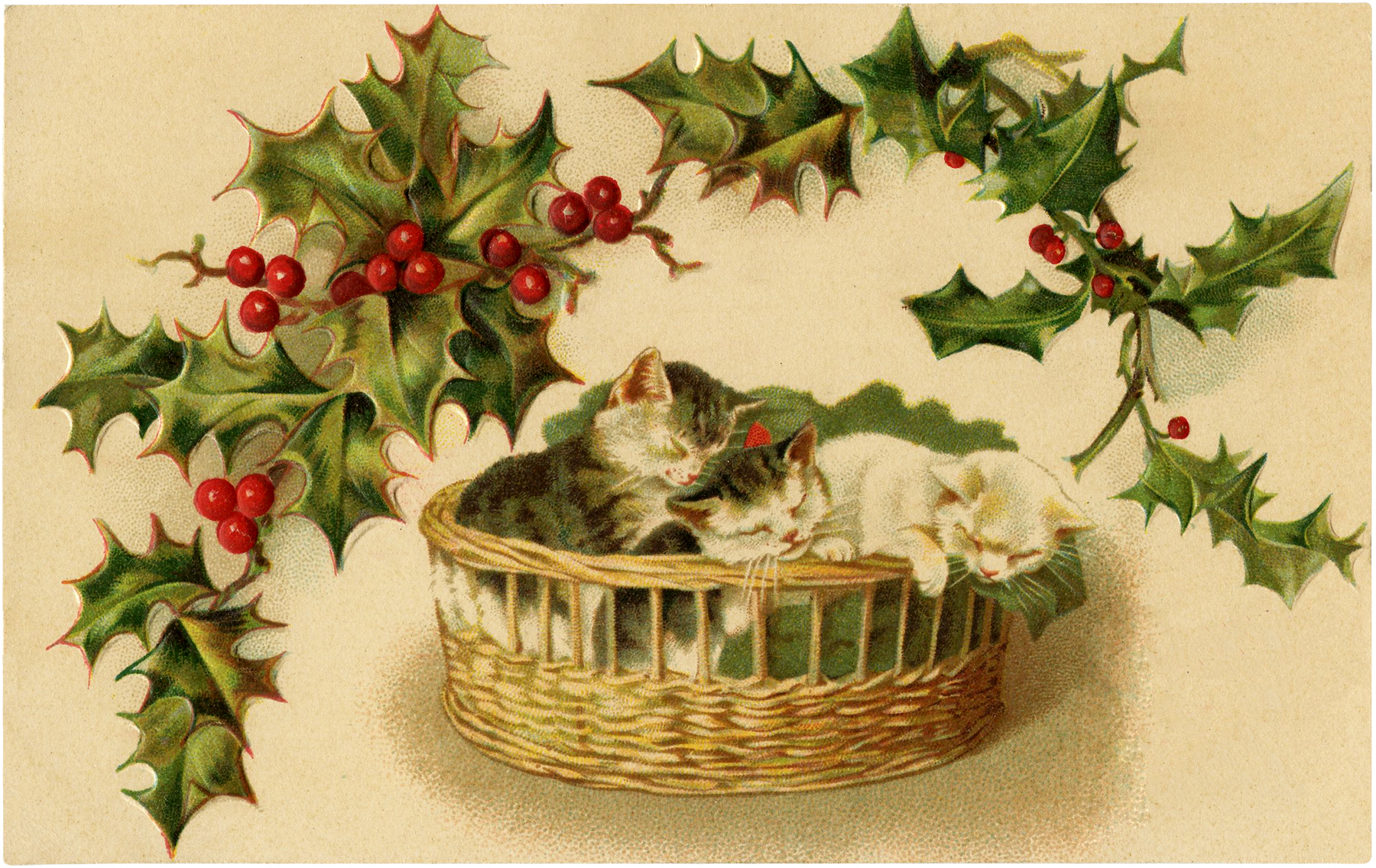 9 Christmas Cat Images.
