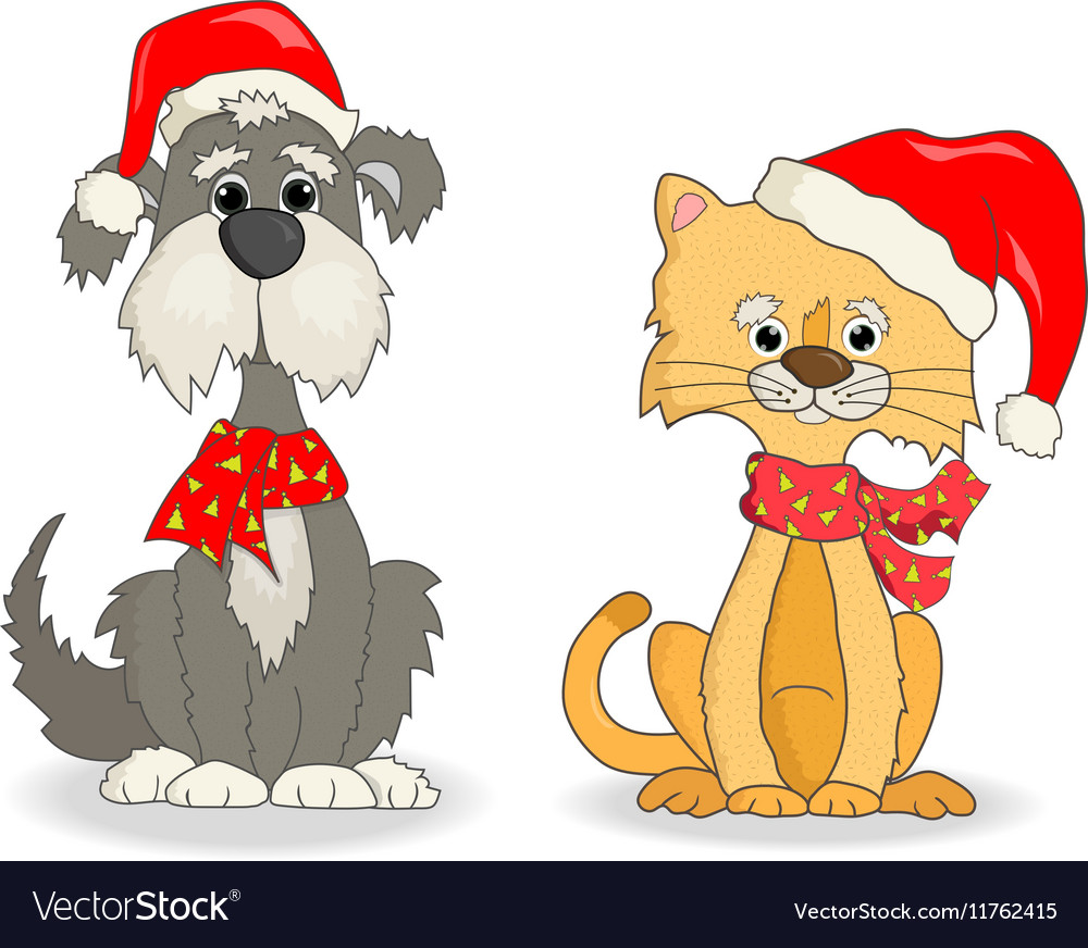 Cat and dog with christmas hats.