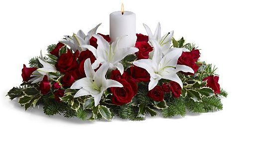 Christmas Flower Pictures (91 Photos).