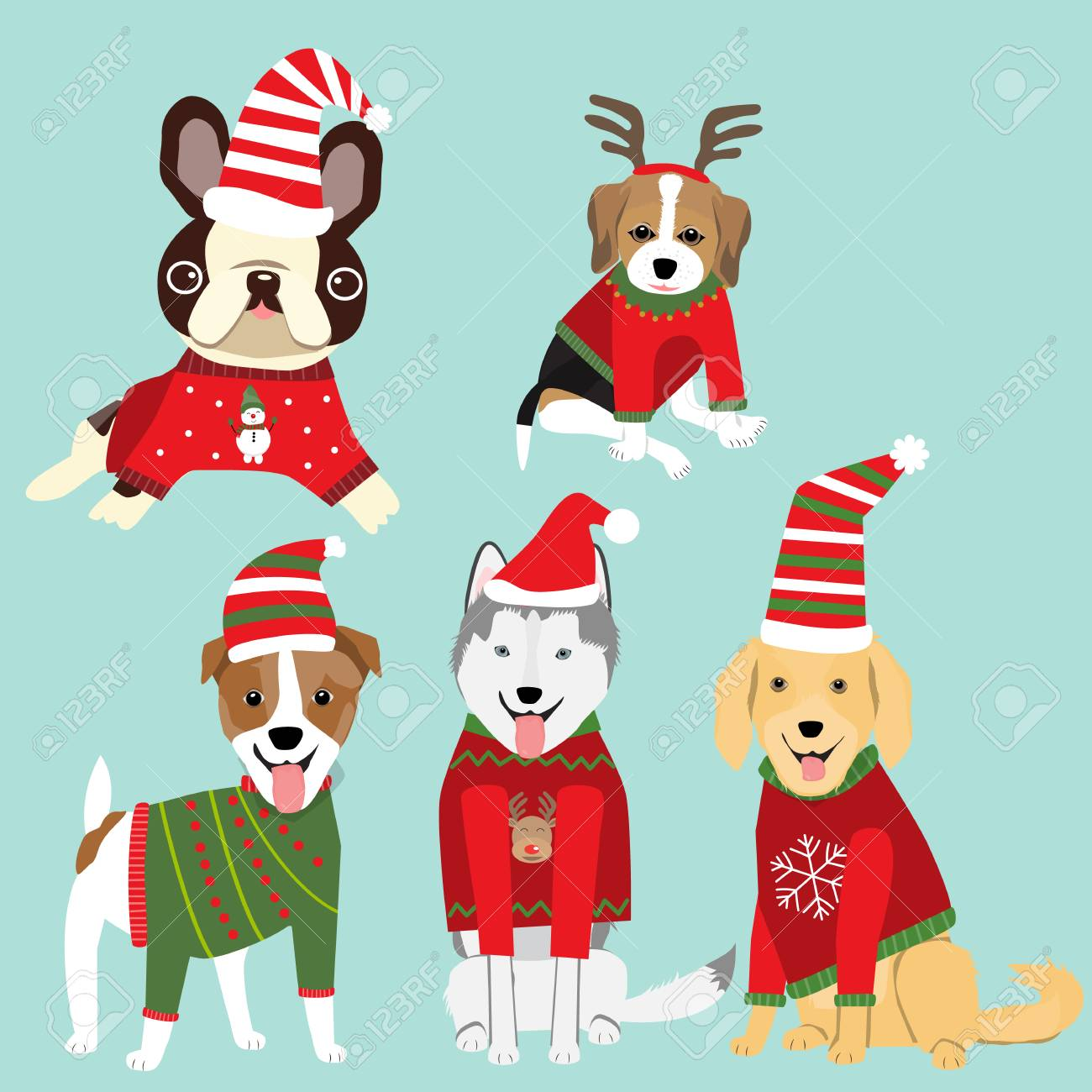 Dogs in Christmas sweater celebret for winter greeting  season.illustration.EPS10..