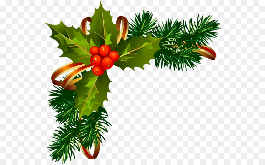 Christmas Poinsettia Clipart png download.