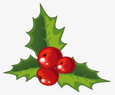 Free Christmas Holly Clip Art with No Background.