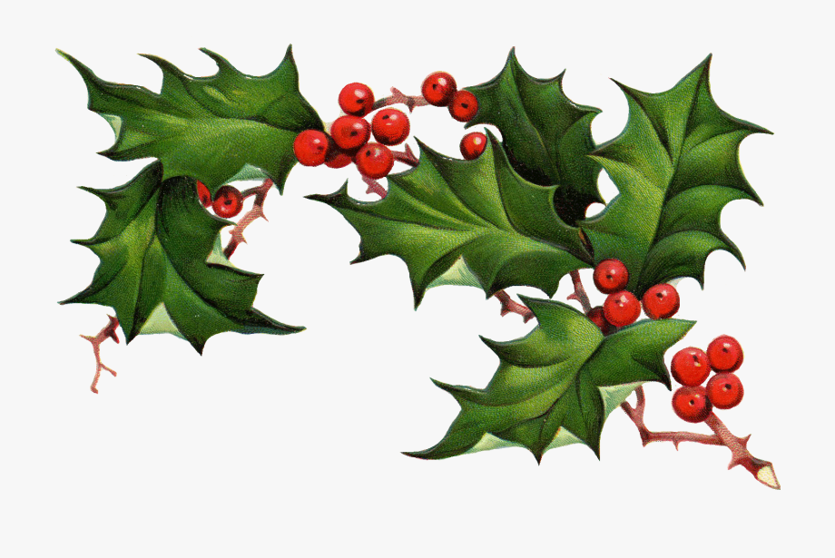 Christmas Holly Border Free Clipart Free Clip Art Images.