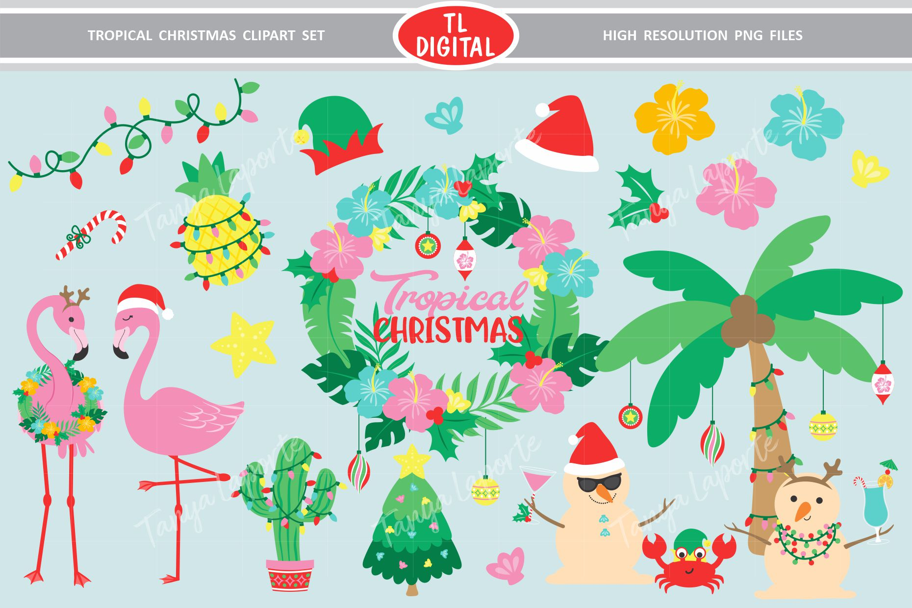 Tropical Christmas Clipart Set.
