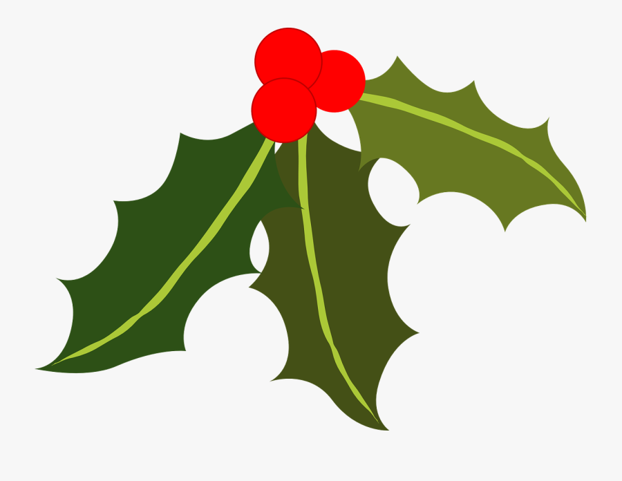 Clip Black And White Stock Free Holly And Ivy Clipart.
