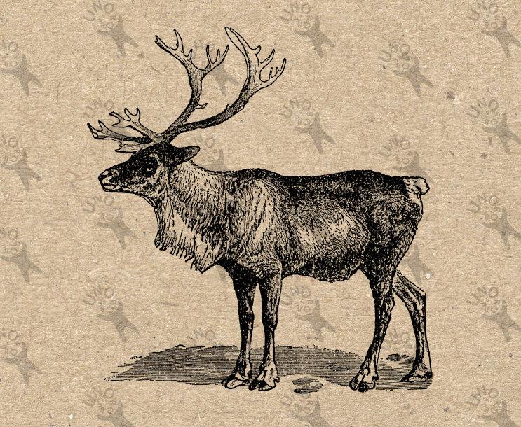 Vintage Christmas Reindeer Instant Download Digital printable.