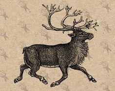 Antique image Deer playing the Violin Instant Download Digital.