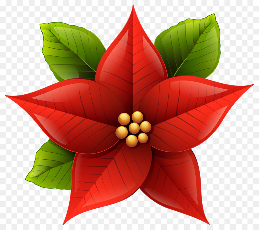 Christmas Poinsettia Clipart.