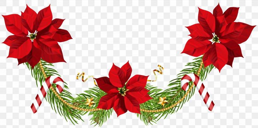 Poinsettia Christmas Clip Art, PNG, 8000x3998px, Poinsettia.