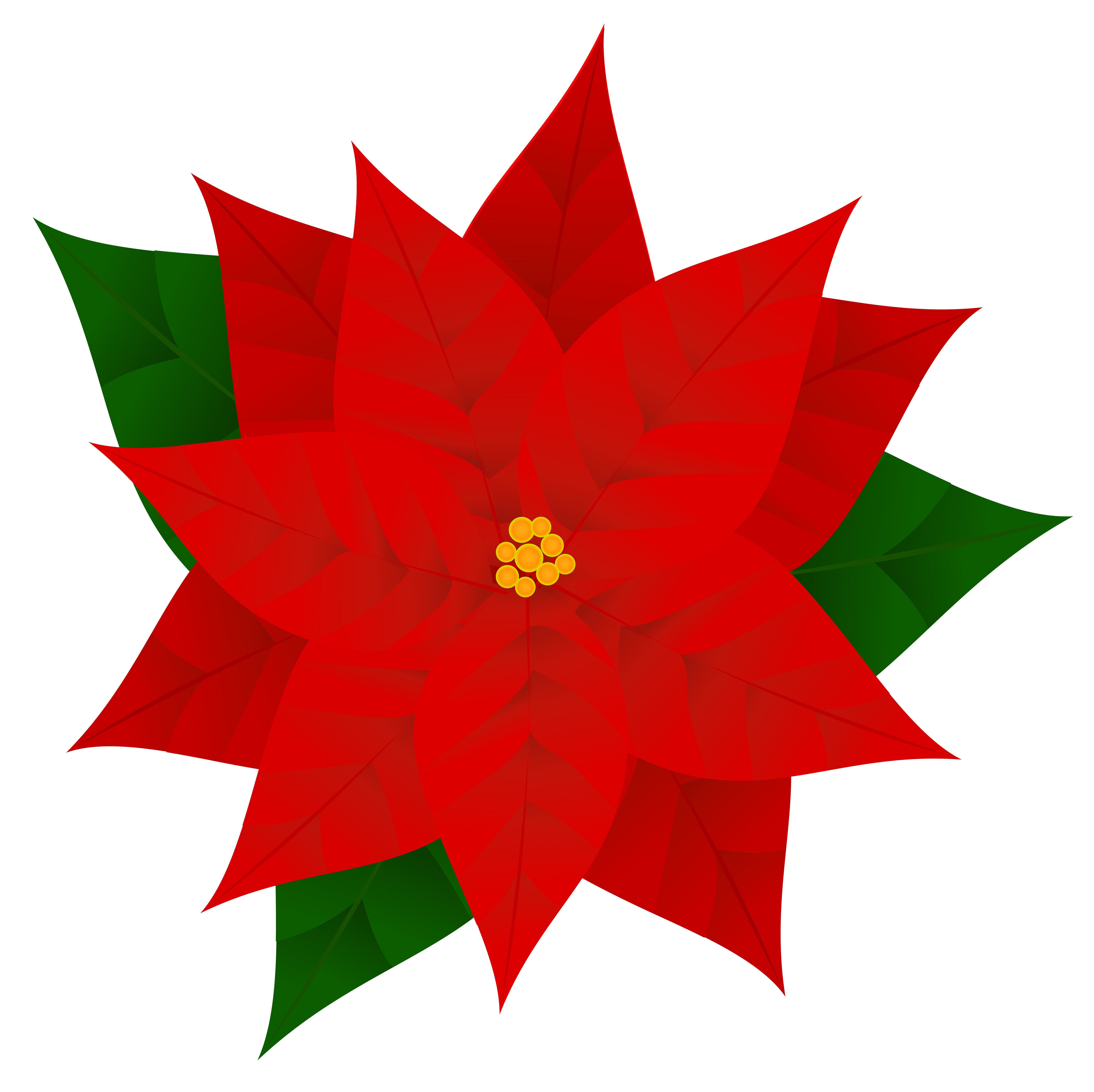 Poinsettia Clipart Transparent.