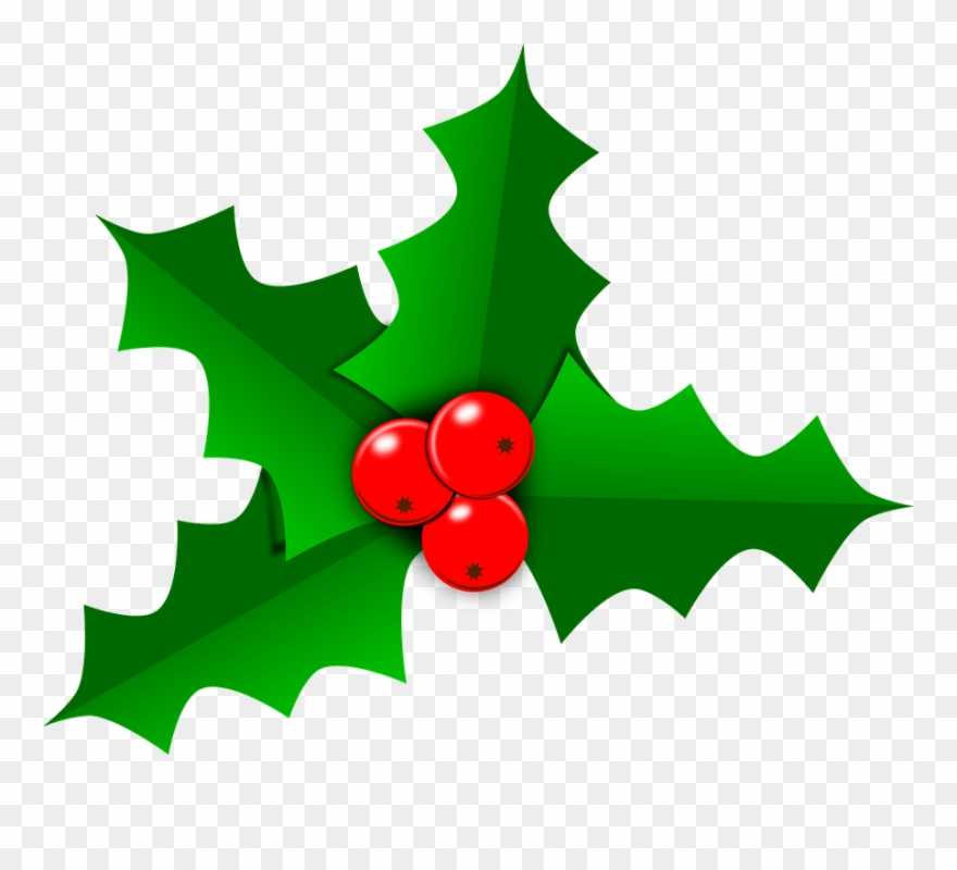 Holly Images Free Holly Christmas Leaf Free Vector.