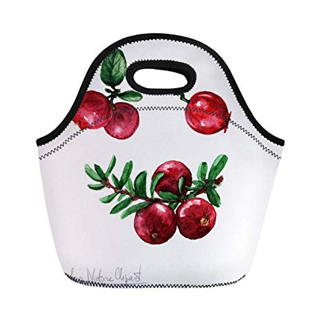 Amazon.com: Semtomn Lunch Bags Food Red Watercolour.