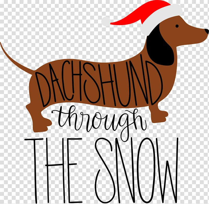 Puppy Dog breed Dachshund Snow, puppy transparent background.