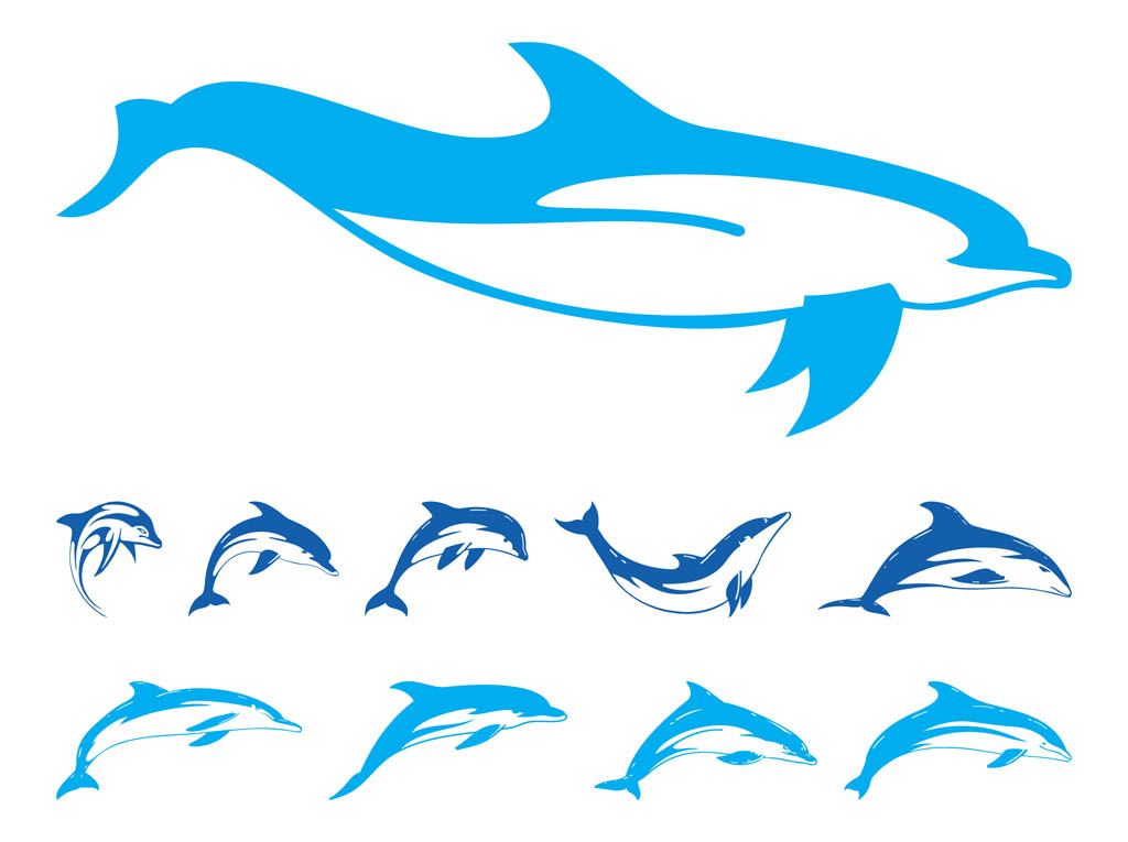 14 Dolphin Vector Art Images.