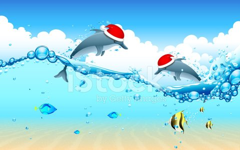 Dolphin Celebrating Christmas premium clipart.
