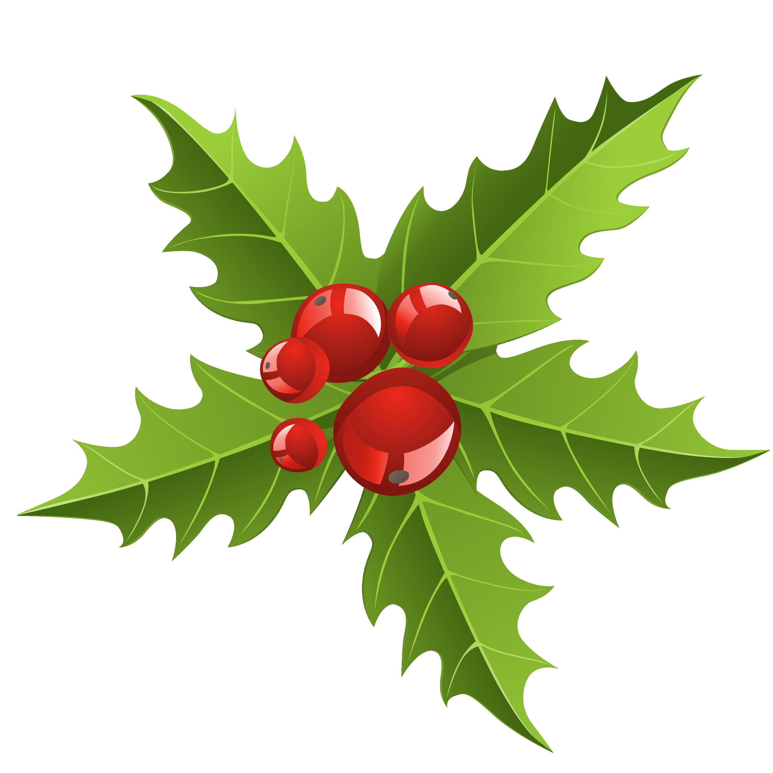 Chrismtmas Mistletoe Element PNG Picture.