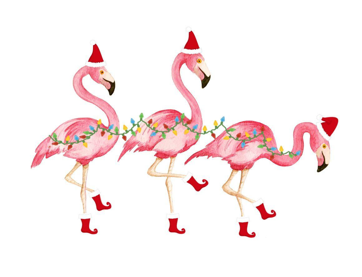 flamingo christmas.