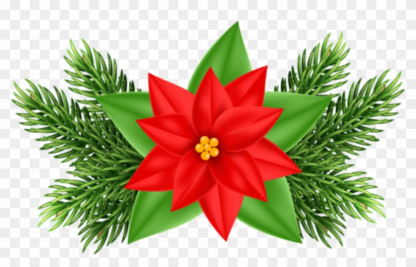 Free Png Christmas Poinsettia Deco Png Images Transparent.