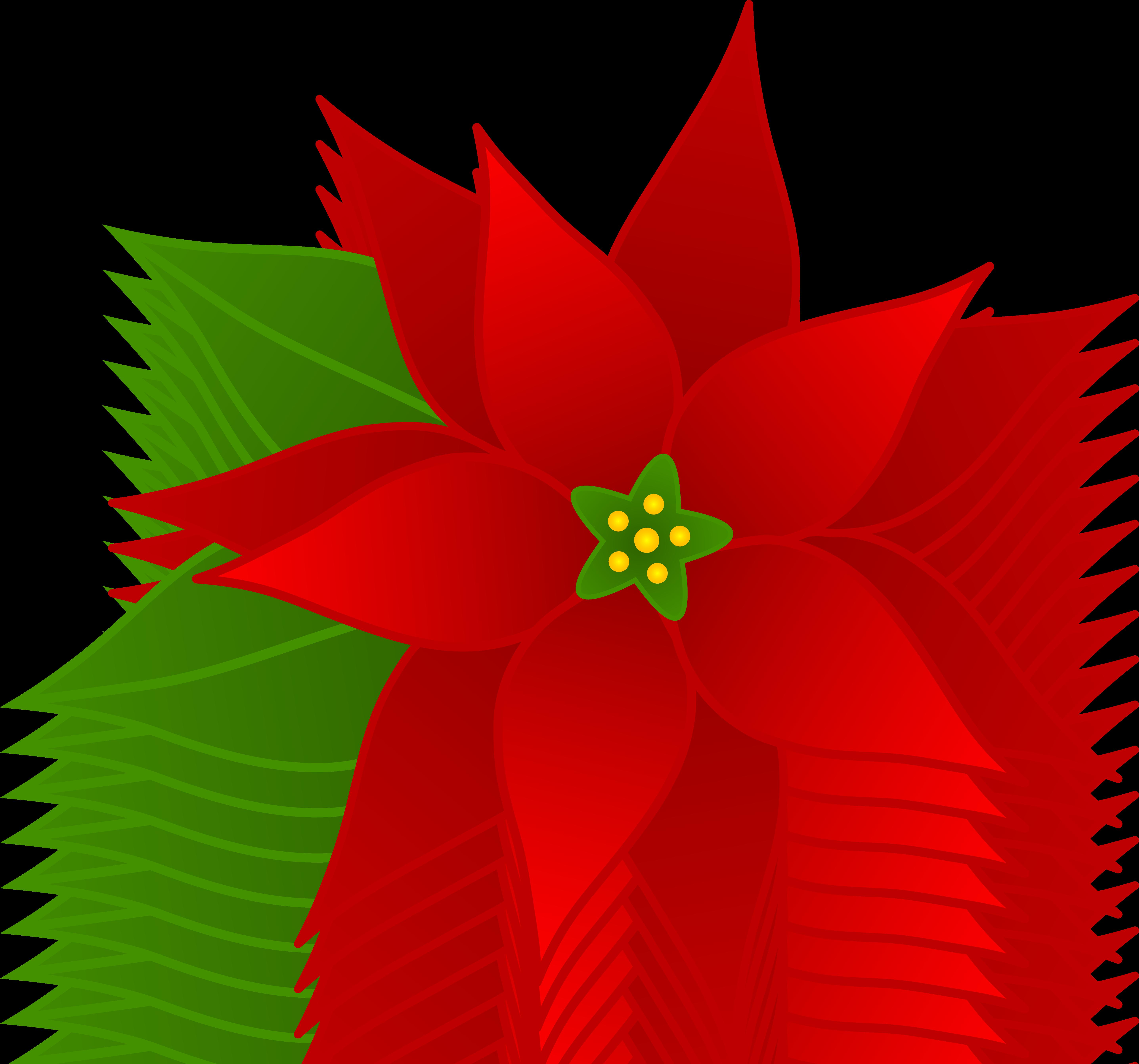 912 Poinsettia free clipart.