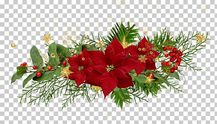 Christmas Flower Desktop Poinsettia, noel PNG clipart.