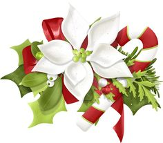 69 Best Clip Art❤Christmas Flowers❀✿✾ images in 2016.