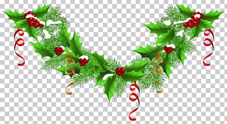 Christmas Garland Wreath PNG, Clipart, Aquifoliaceae, Branch.