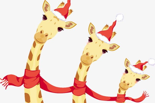 Christmas Giraffe PNG, Clipart, Cartoon, Christmas.