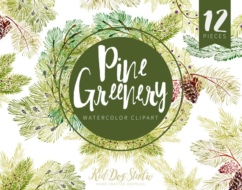 Winter Greenery Watercolor Pine Clipart Set, Winter Laurels, Holiday Pine  Cone Wreath, Christmas Greenery Clip Art Images, Hand Painted PNG.