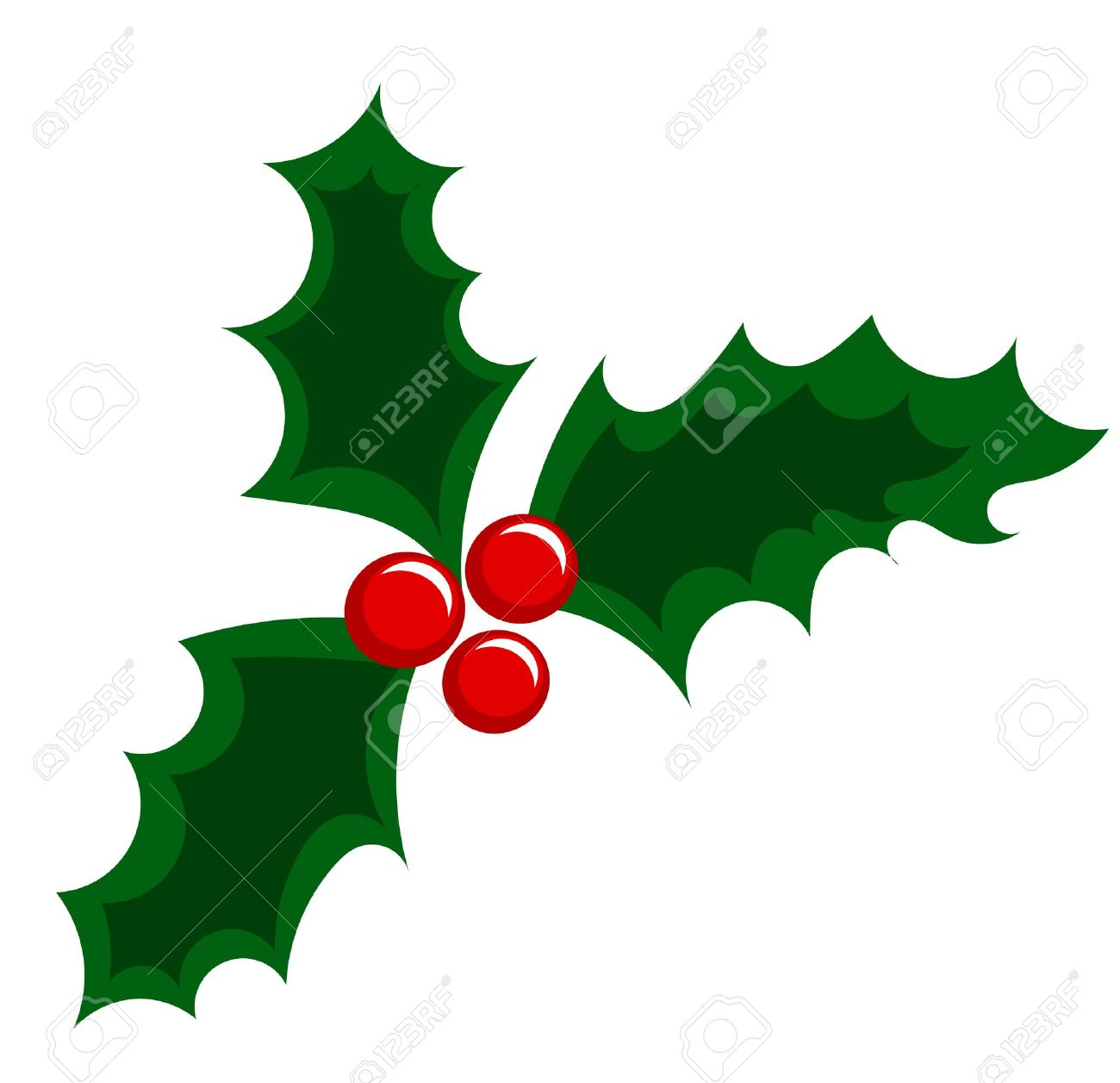 Holly Berry Christmas Illustration Royalty Free Cliparts, Vectors.