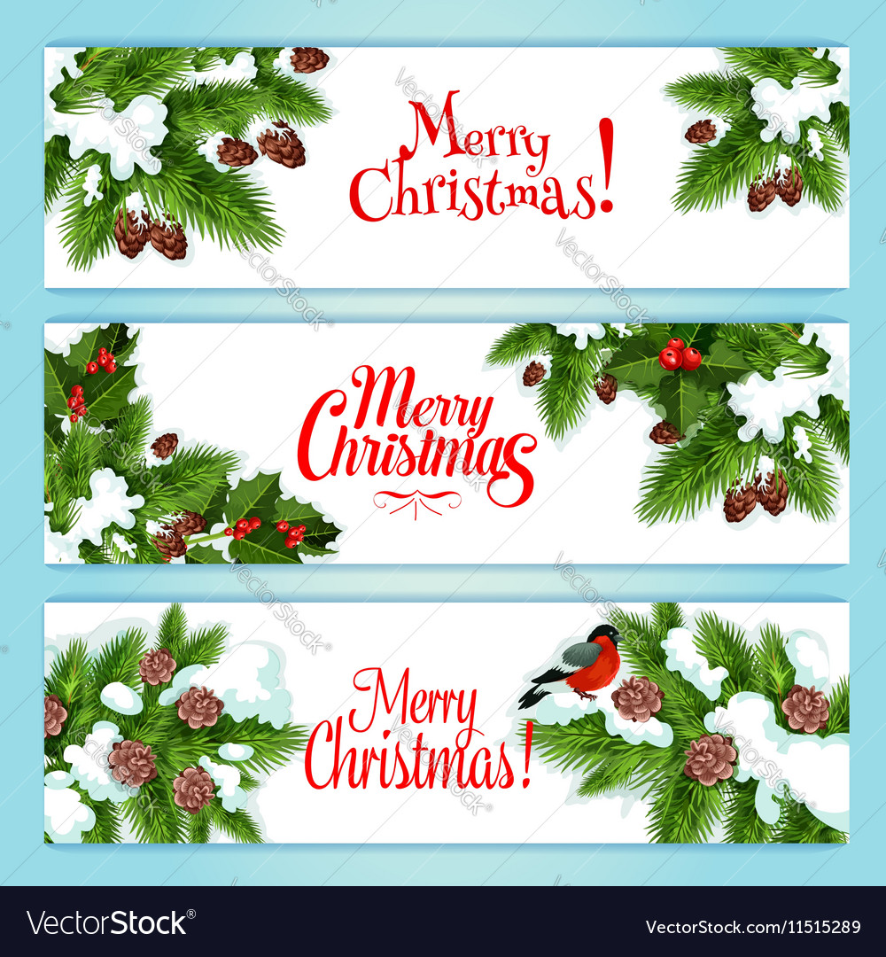 Christmas tree holly berry banner for xmas design.