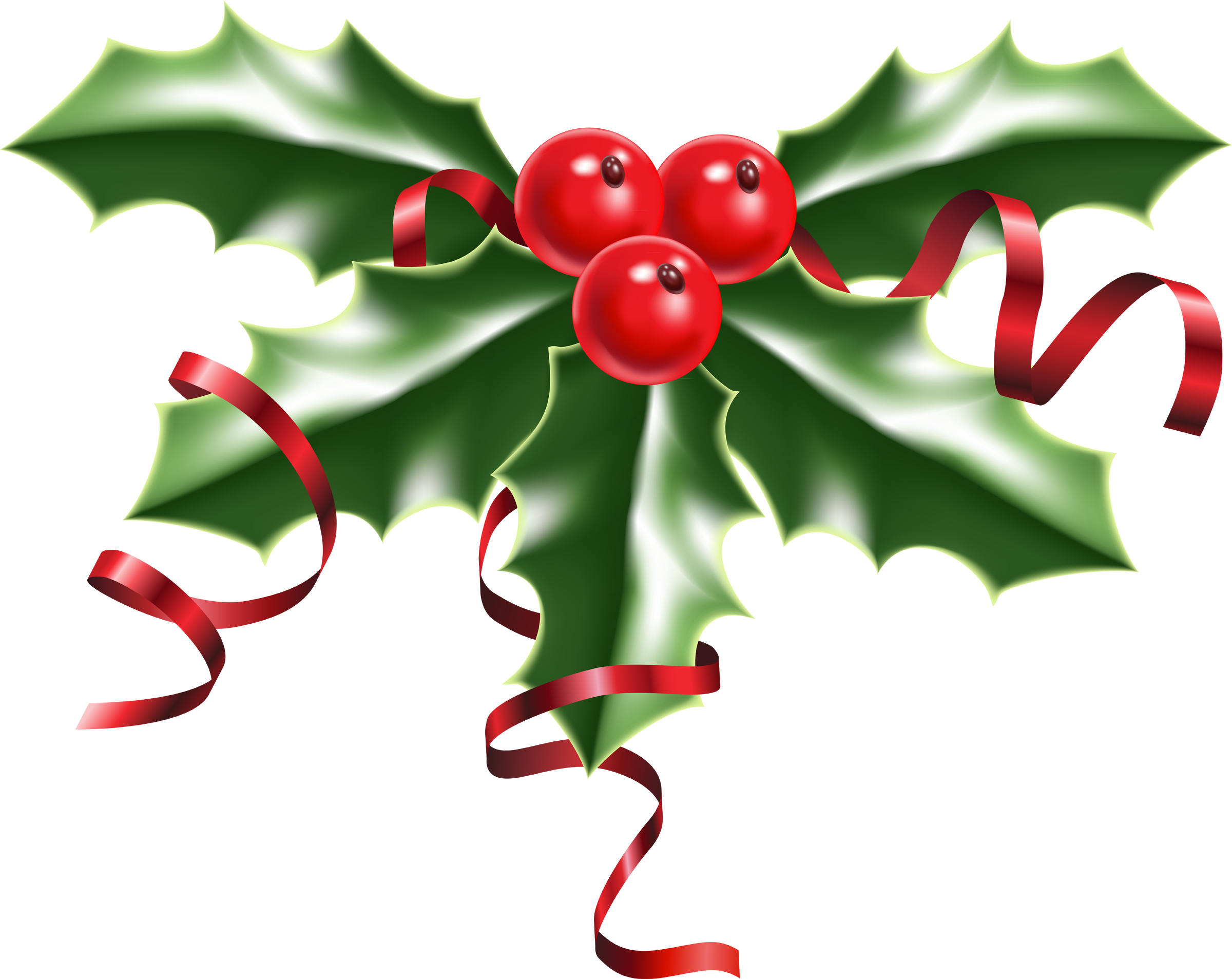 Free Christmas Holly Images, Download Free Clip Art, Free Clip Art.