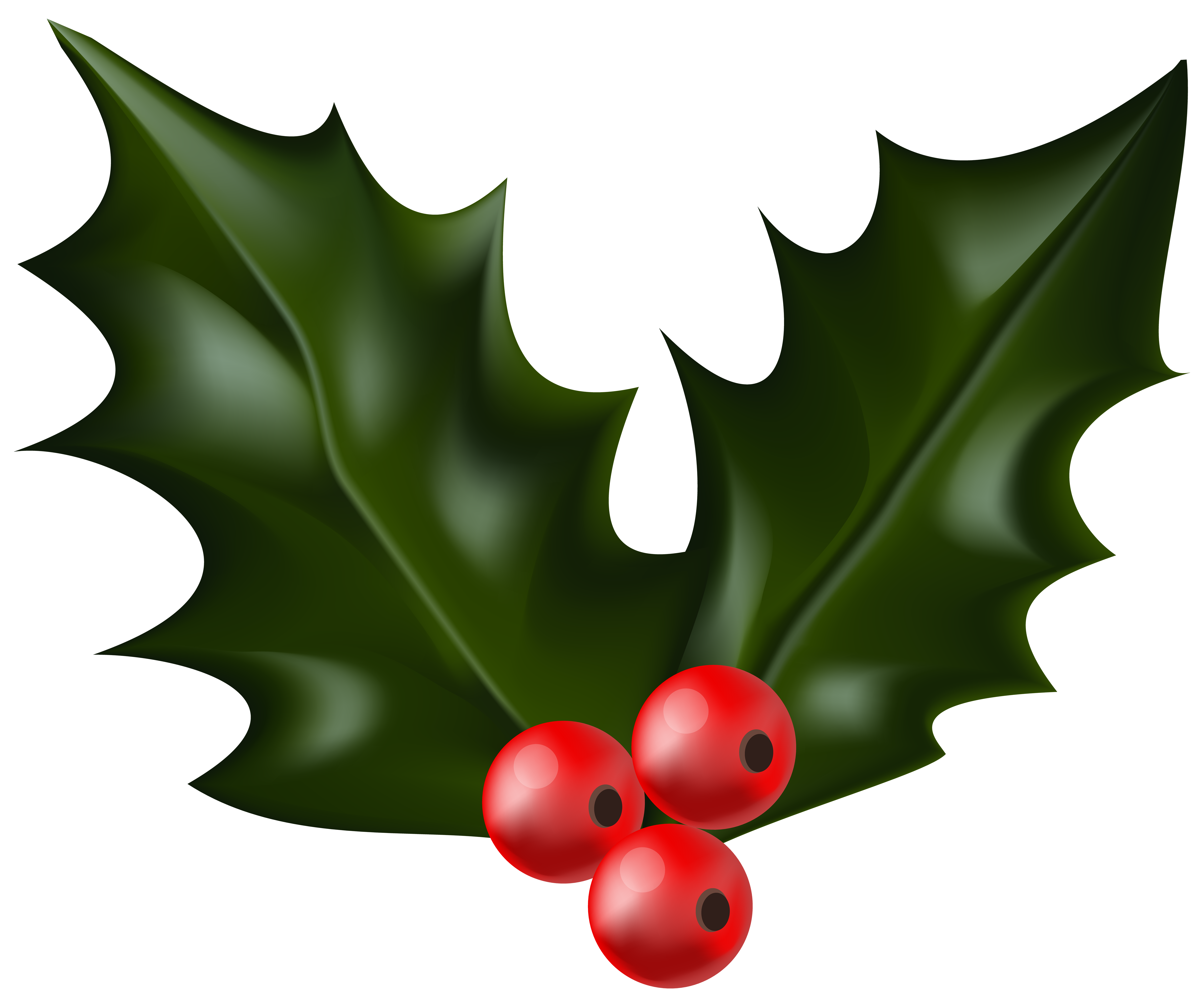 Holly Berry Clipart.