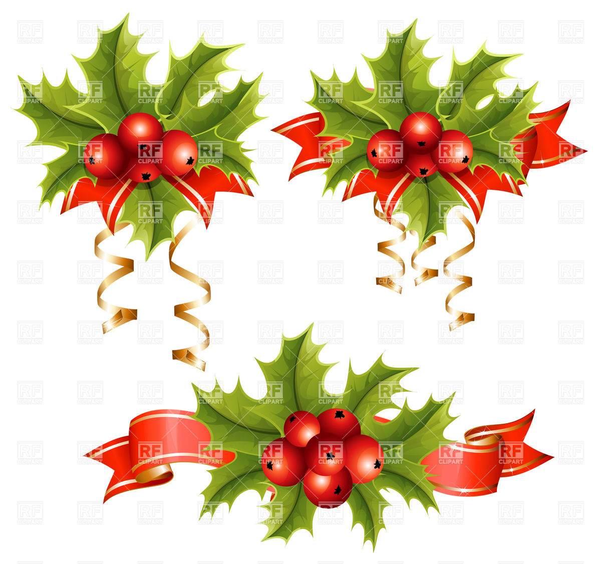Holly with berries Stock Vector Image.