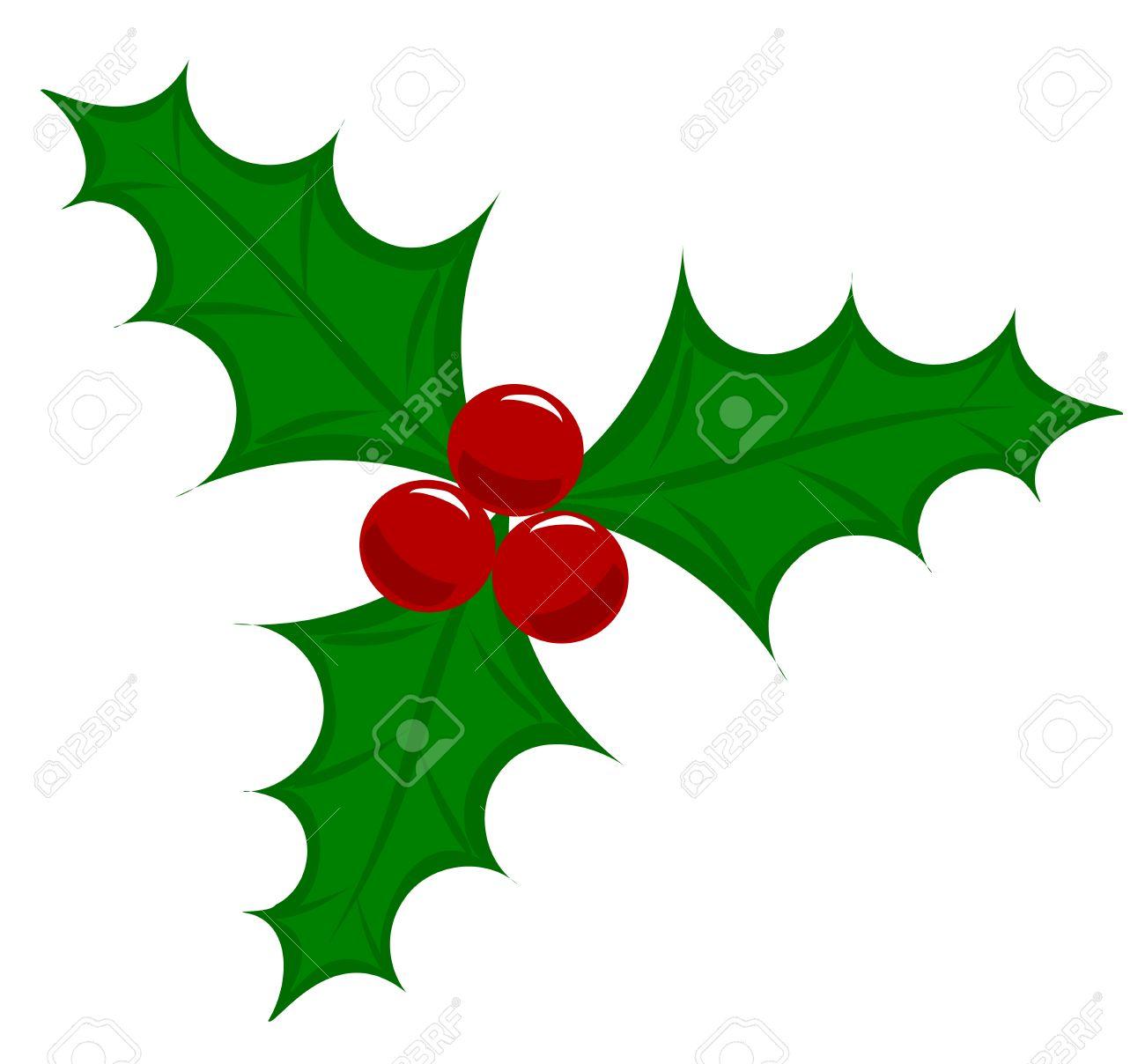 Symbolic Christmas holly berry illustration.
