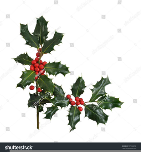 Christmas Holly Clipart Free Borders.
