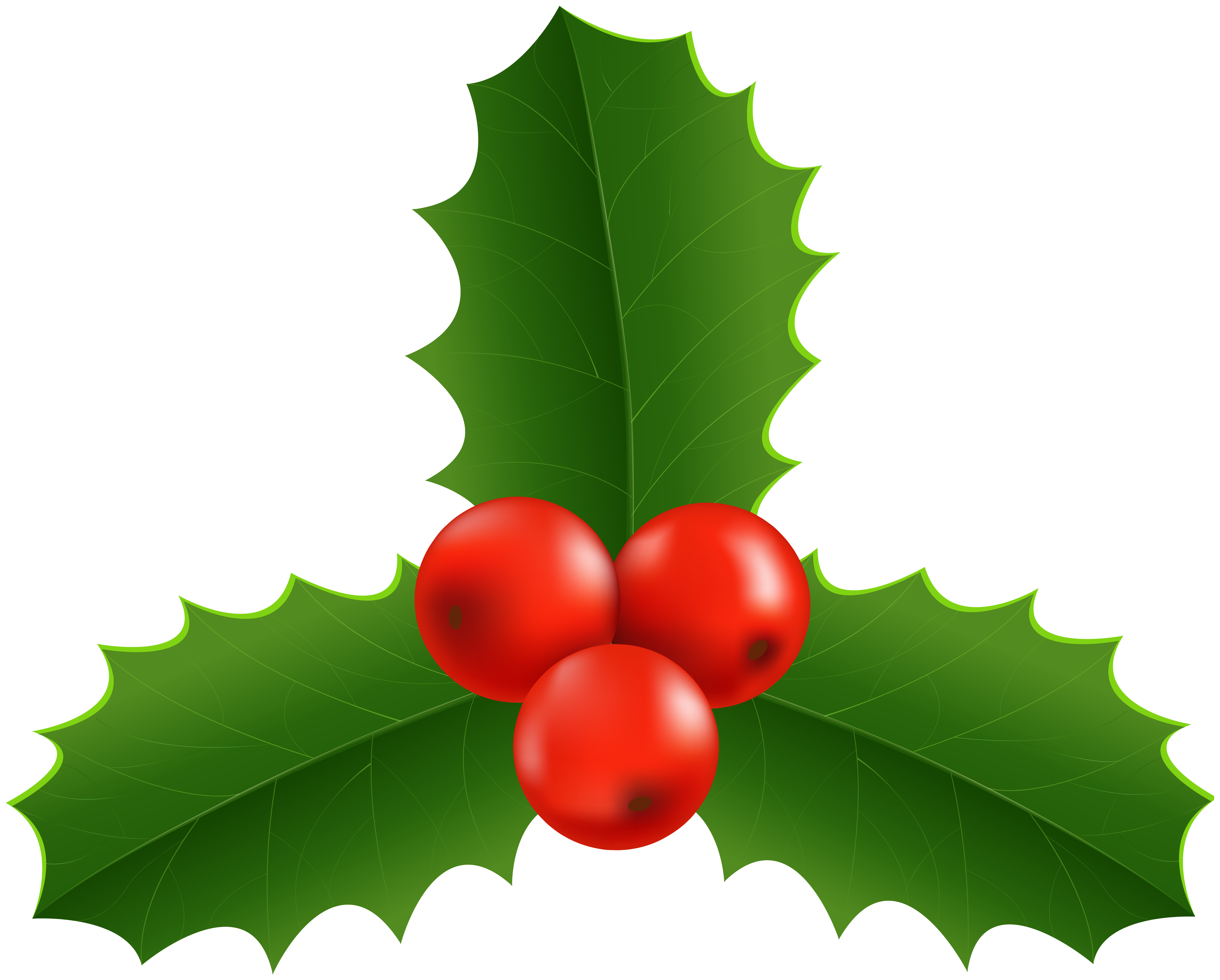 Christmas Holly Clip Art PNG Image.